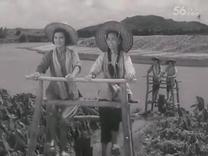 电影《南海的早晨》插曲  山歌唱出心里话