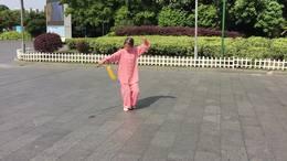 武当七星剑   演练陈庆琳