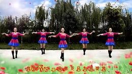 高龙慧慧广场舞 一朵鲜花 编舞 慧慧 演示 慧慧团队......