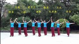 115.太阳花广场舞(9人) 又见北风吹 编舞:艺子龙_01...