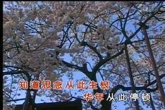 渡口 肖,20170706
