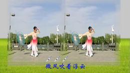 大吉波娃广场舞 微风细雨(李小平演示)