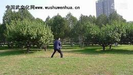 郭彦君老师演练短棍六段单练套路