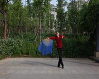 学舞练舞【一枝梅】