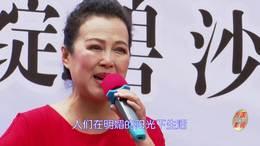 郑州第十一届海棠文化节 碧沙乐团张馨予演唱 《在希望的田野上》