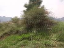 奔驰在乌蒙大草原