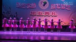 00020海宁实幼集团中心、大三班、舞蹈、 我的娃娃我的梦