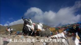 我们在西藏5013米的米拉山口