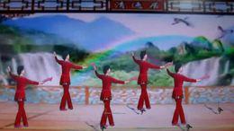 陇南市焦金凤原创舞蹈,党啊对您说,背面演示