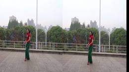武汉江滩广场舞:雪花飘来梅花开(CL)