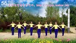 青春飞舞(2)无锡宁波银行杯千人广场舞教学视频