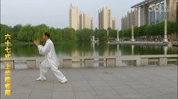 贾廷义杨式115式太极拳(最新版)