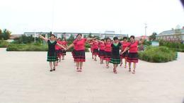 凌寒·傲雪广场舞《草原情哥哥》32步双人舞