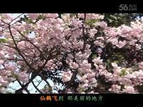 TSH视频田 经典歌曲视频 我的家乡