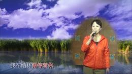 高手在民间 漂亮女中音演唱《我在纳林湖等你》