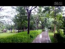 《微风细雨》演唱:董文华