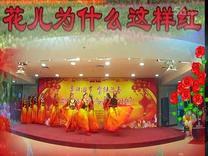 北京人定湖舞蹈队表演舞蹈 花儿为什么这样红