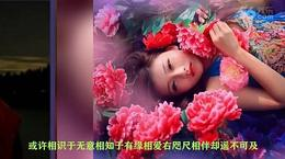 浪漫红尘美图制作MV【做你的红颜】朗诵