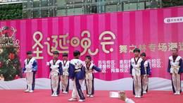 舞子林华佗分校跆拳道比赛视频