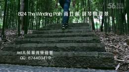 824  The Winding Path 雨竹林 安静钢琴演奏背景 竹林深处素材...