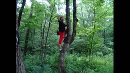 秃顶子森林公园相册视频