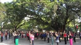 大众强体 公园晨舞 十三