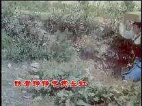 电影《碧海红波》插曲  英雄的雷达兵
