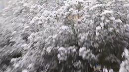 2016年武汉市的第一场雪