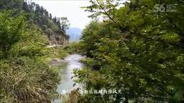 《故乡的原风景》陶笛演奏:宗次郎