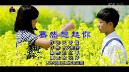 蓦然想起你 徐羽泽 国 DVD双轨音频