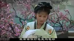 越剧红楼梦全剧 主演 钱慧丽单仰萍方亚芬等 明星版