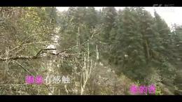 朋友别哭 刘紫玲(金家湾影音)KTV