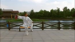 贾廷义杨式53式太极剑(最新版)