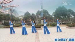 宜兴绿茶广场舞《莲》応子广场舞系列