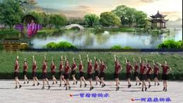 《水月亮》192丁丁深圳冰之霞九江丁丁广场舞编舞:立华