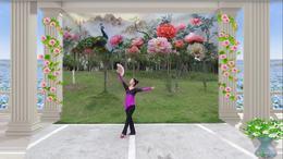 威远幸福广场舞《国色天香》个人版 编舞:王梅 203