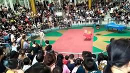 杭州动物园上
