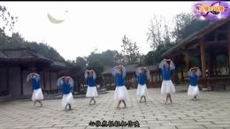 紫蝶原创广场舞《吻月》正面演示