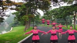 跳到北京 枝江市顾家店高殿寺草根广场舞刘心珍 红喜数码张洪芹
