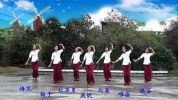 112.太阳花广场舞 江南谣 编舞:王梅