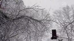 (330)第四集;波士顿冬天《雪风景》:2016北美之行纪实片(四)
