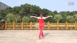 邵东跳跳乐第十一套中老年快乐舞步健身操_标清
