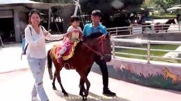 (364)第十五集:秦岭动物园 下集  2016陕西风光系列片(15)