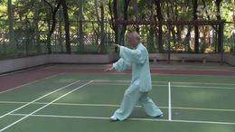 杨式太极拳正面演练