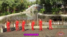 河南雪莲广场舞《歌在飞》 编舞惠汝