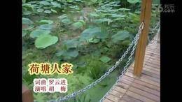 荷塘人家MV(胡梅演唱)