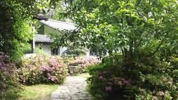 MAH00575杜鹃园 4园区花景春融群建杜鹃园九段录像