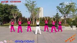 211.风筝误 DJ(原创)舞动旋律2007健身队(舞曲:DJ磊子)...