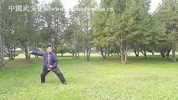 郭彦君老师演练陈氏太极拳老架一路
