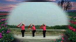 北京莲花池广场扇子舞(红高粱九儿)编舞 -ROCK